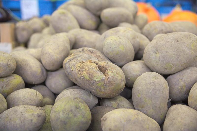 Hard working potato