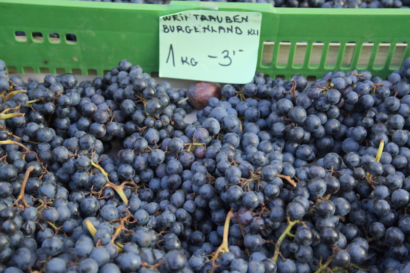Grapes from the Burgenland